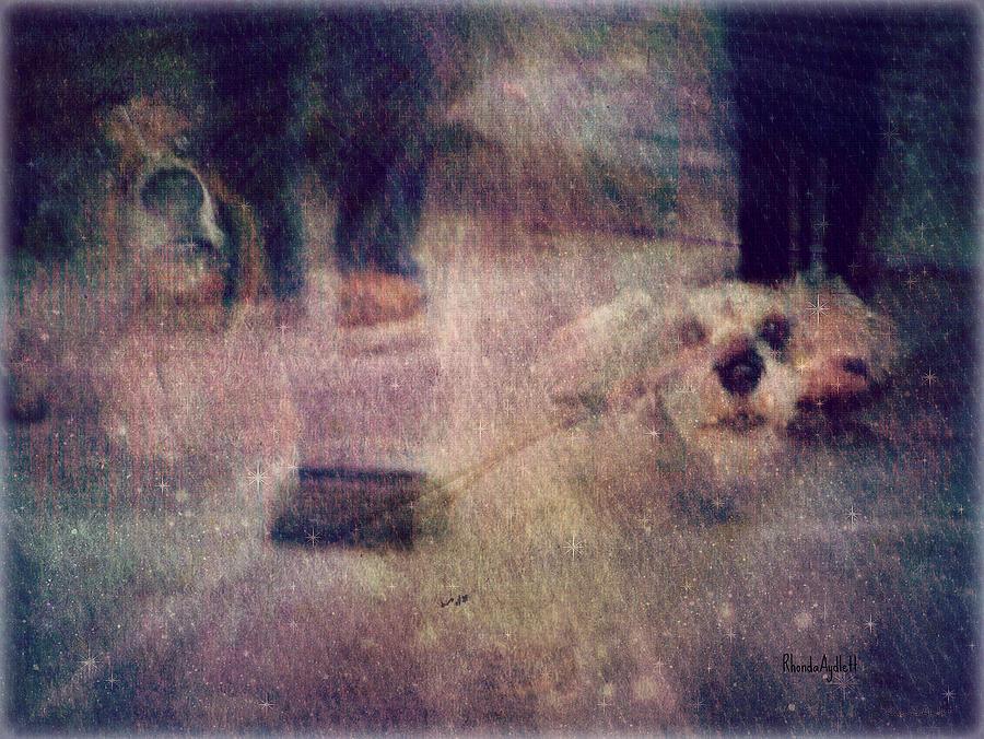 Dogs Mixed Media - Rainbow Bridge Crossing by YoMamaBird Rhonda