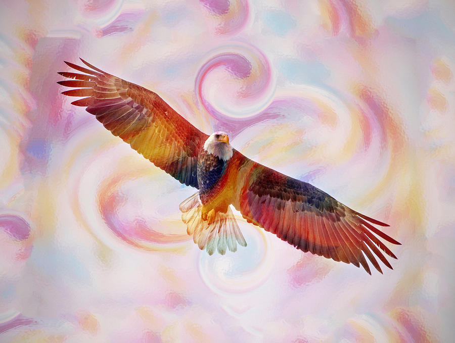 Rainbow flying eagle watercolor painting painting by georgeta blanaru bald eagle painting rainbow flying eagle watercolor painting by georgeta blanaru altavistaventures Image collections