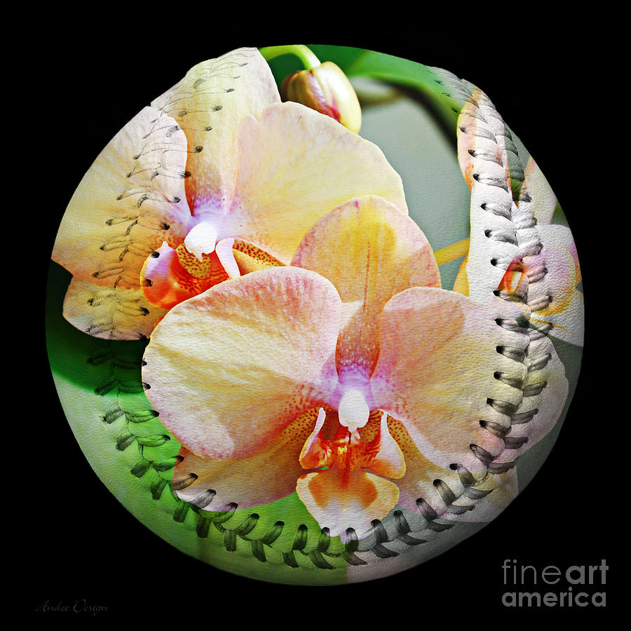 Baseball Photograph - Rainbow Orchids Baseball Square by Andee Design