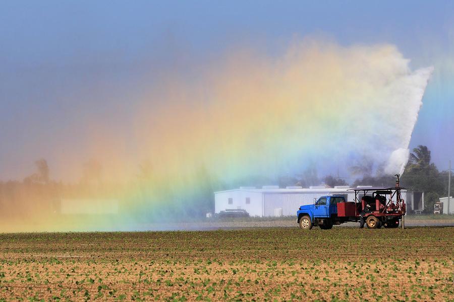 Farmland Photograph - Rainbow by Rudy Umans