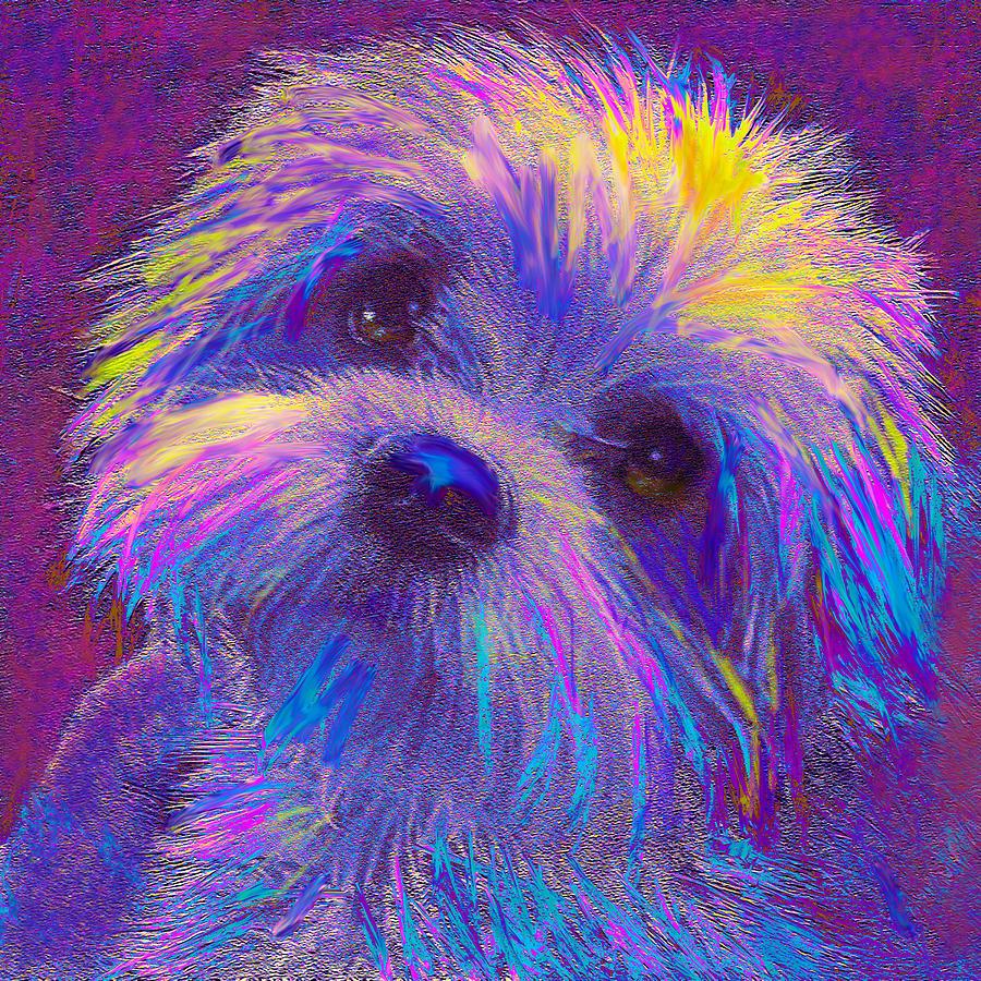 Jane Schnetlage Digital Art - Rainbow Shih Tzu by Jane Schnetlage