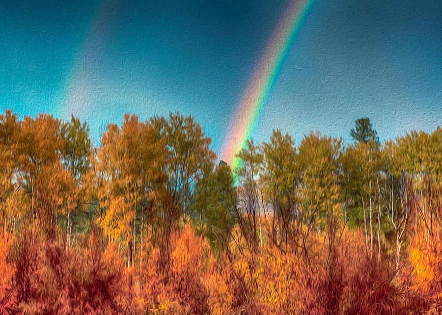 North Cascades Photograph - Rainbow Surprise by Omaste Witkowski