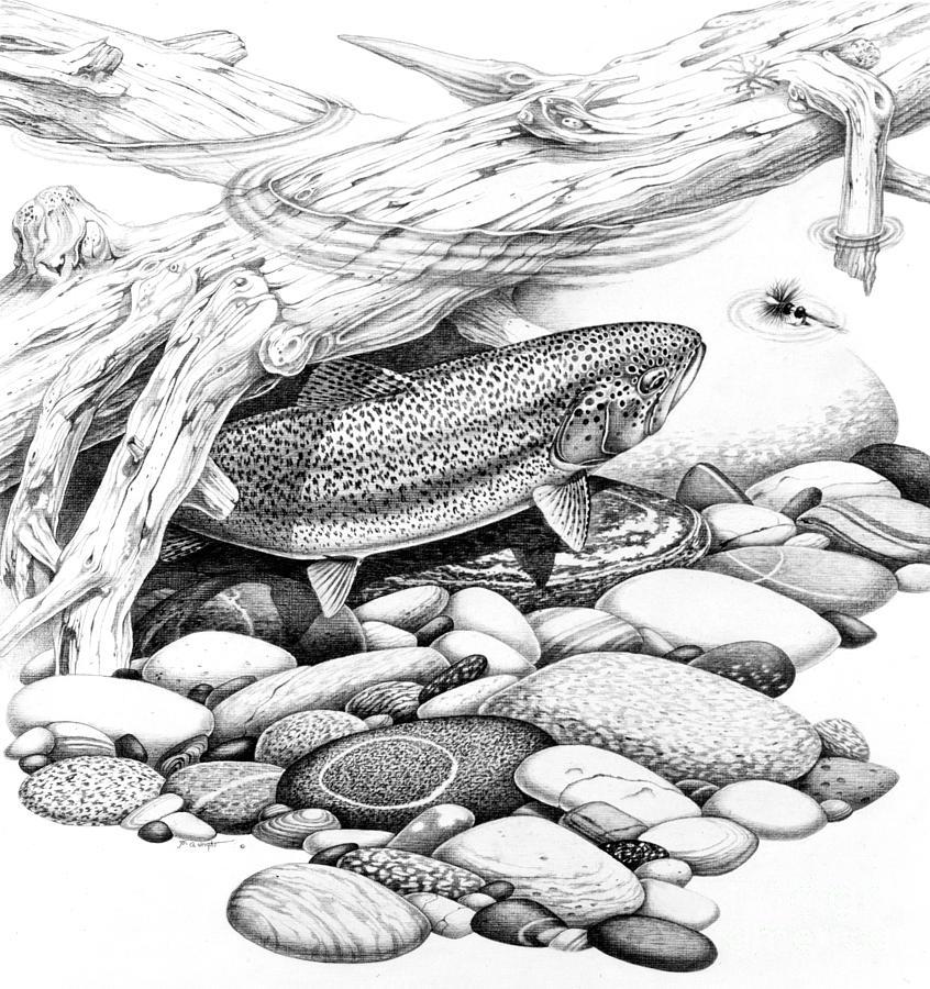 нужна картинка карандаш рыбалка нормальный