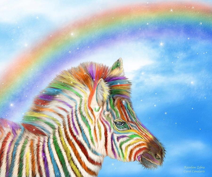 картинка радужная зебра здесь есть отделения