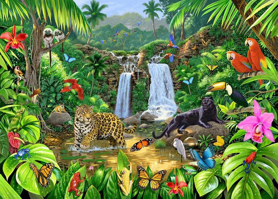 Animal Photograph - Rainforest Harmony Variant 1 by Chris Heitt