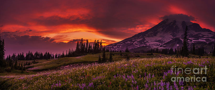Rainier Fire Mountain Panorama Photograph
