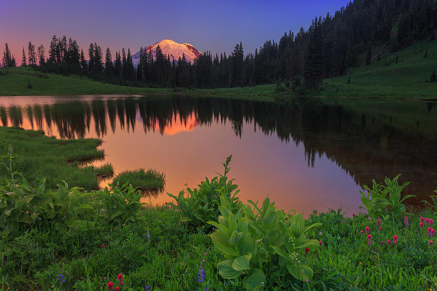 Mount Rainier Photograph - Rainier Reflections by Manju Shekhar