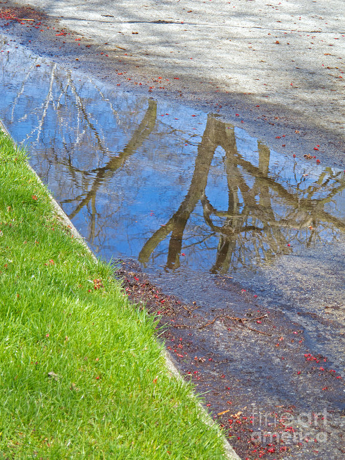 Puddle Photograph - Rainy Day Aftermath by Ann Horn