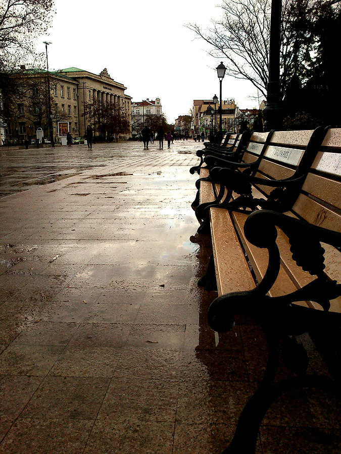 Bench Photograph - Rainy Day by Lucy D