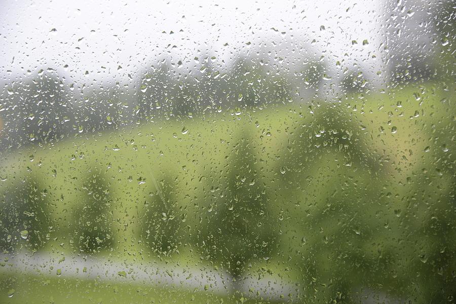 Fine Photograph - Rainy Day Romance 2 by Teo SITCHET-KANDA
