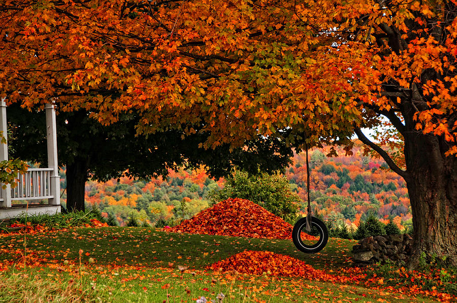 Fall Photograph - Rakings All Done... by Mike Martin