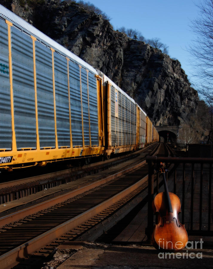 Trains Photograph - Rambling Rose by Steven Digman