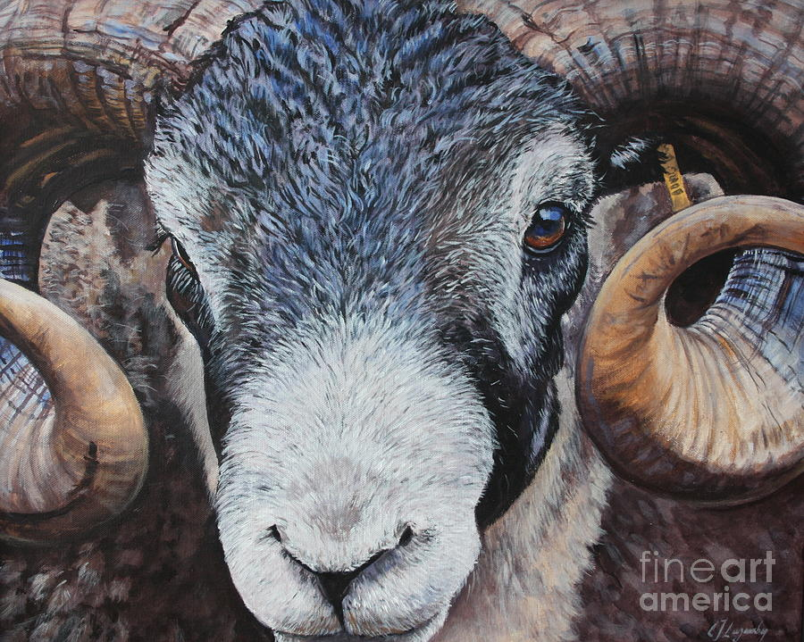 Ram Painting - Rammed-in by E Jane Lazenby