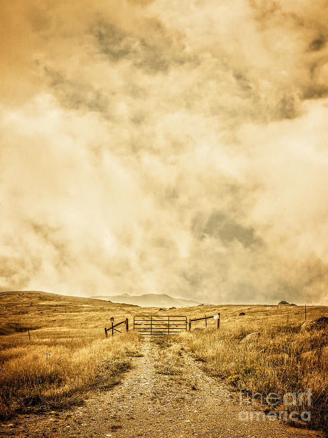 Ranch Photograph - Ranch Gate by Edward Fielding