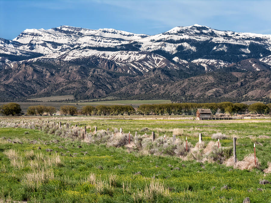 Ranching Photograph - Ranching In Modoc by Kathleen Bishop