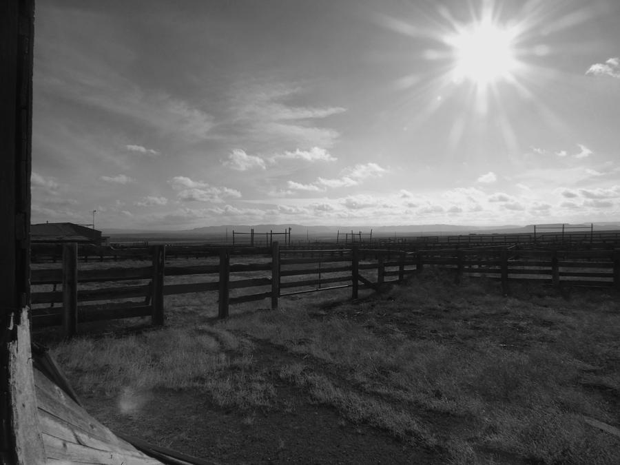 Colorado Photograph - Rancho Colorado by Anna Villarreal Garbis