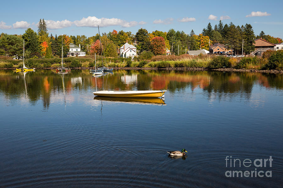 Rangely Lake in Fall by Brenda Giasson