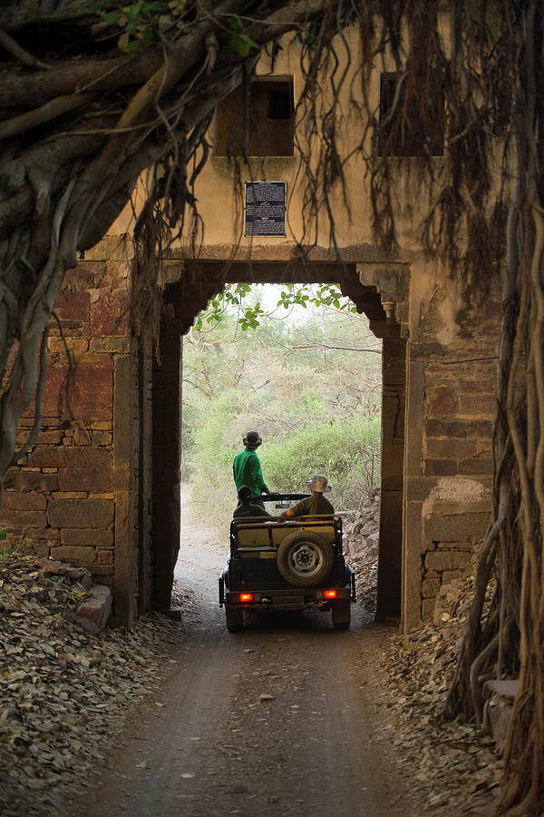 Ranthambhore Photograph by Images From India