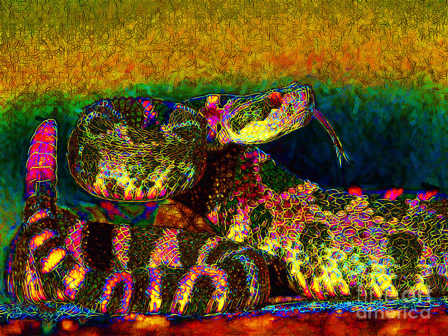 Rattlesnake Photograph - Rattlesnake 20130204p0 by Wingsdomain Art and Photography