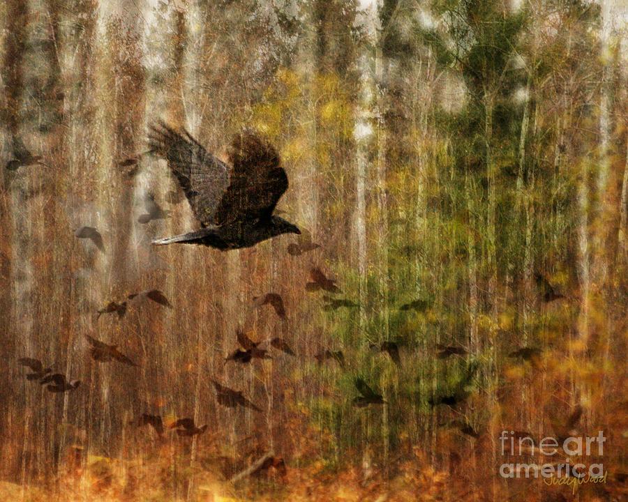 Ravens Digital Art - Raven Wood by Judy Wood