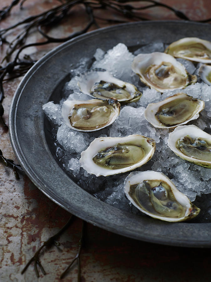 Raw Oysters Over Ice Photograph by Alexandra Grablewski