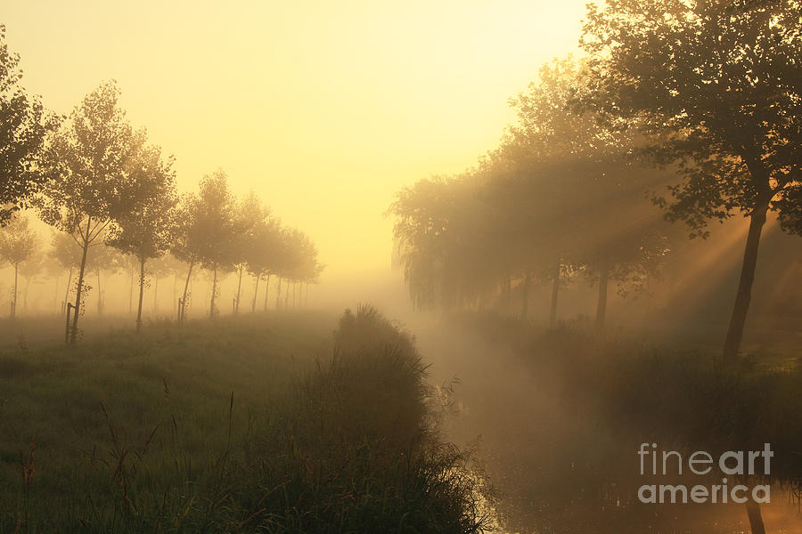 Sunlight Photograph - Rays Of Dreams by LHJB Photography