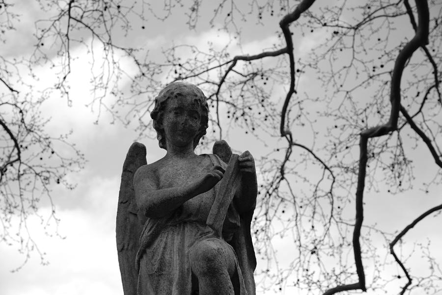 Cemetery Photograph - Reading Angel by Jennifer Ancker