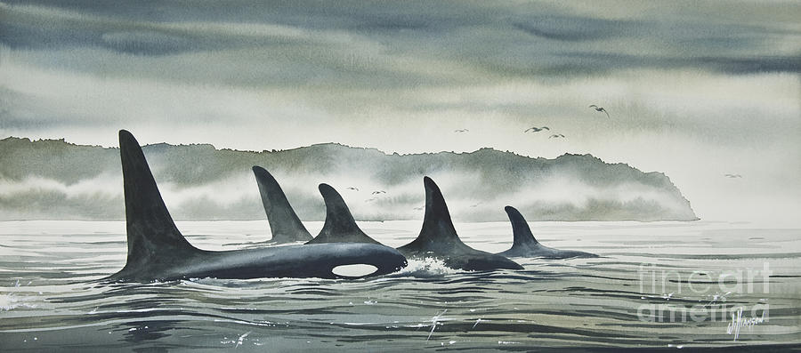 Orca Framed Print Painting - Realm Of The Orca by James Williamson