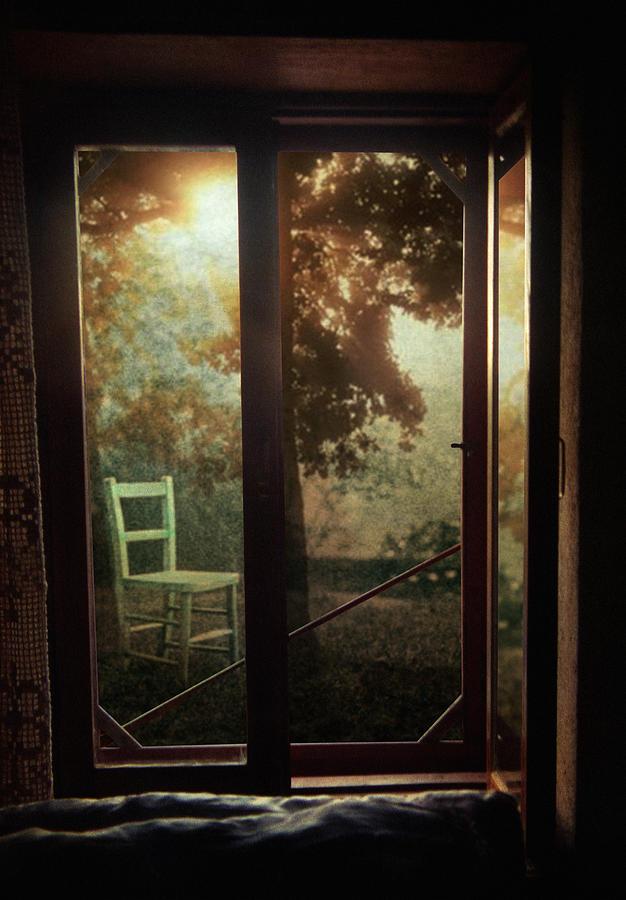 Window Photograph - Rear Window by Taylan Apukovska