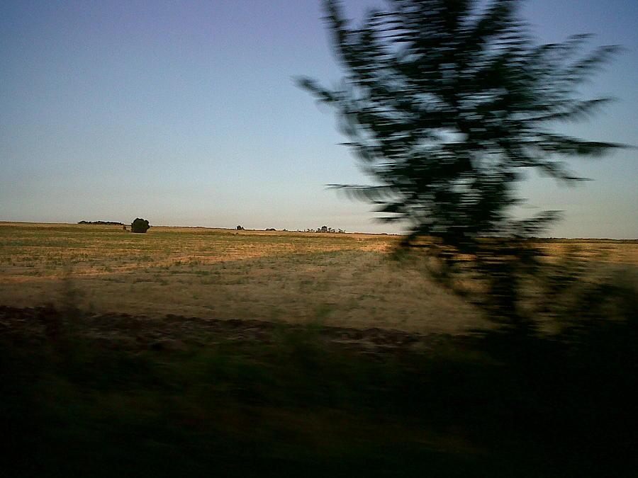Landscape Photograph - Rebel by Andreea Alecu