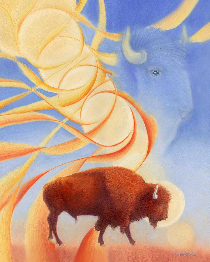 Receiving Buffalo Drawing
