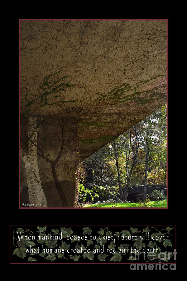 Vines Photograph - Reclaim No.8 by Peter Piatt