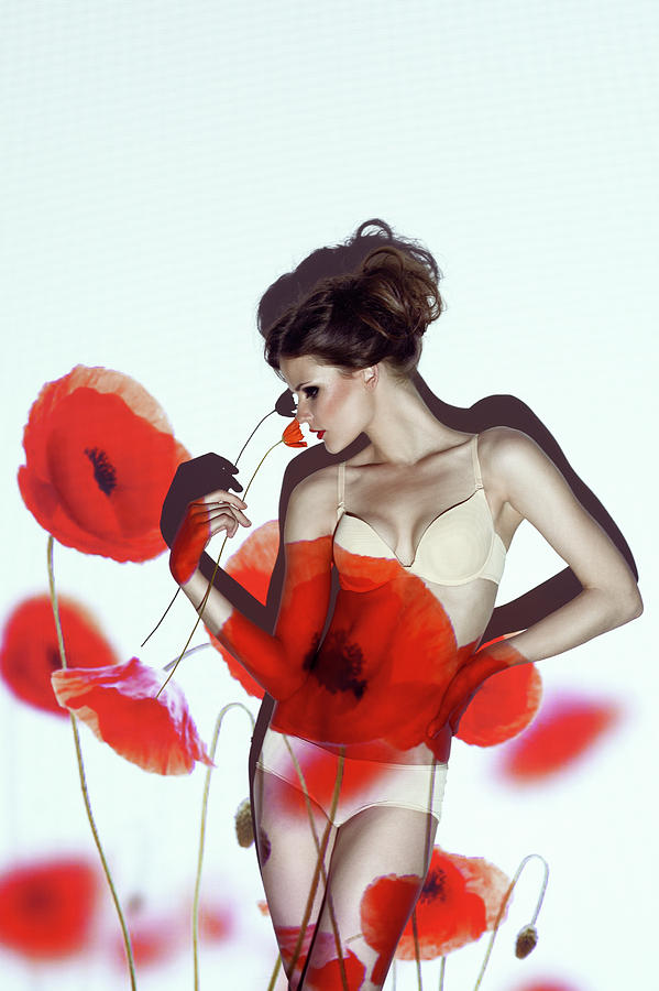 Poppy Photograph - Red by
