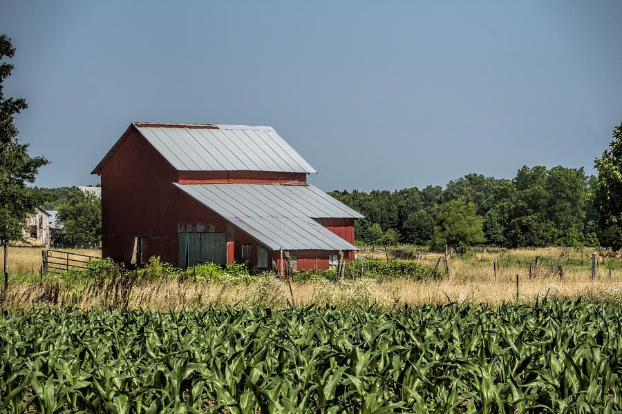 Amish Photograph - Red Amish Barn And Corn Fields by Kathy Clark