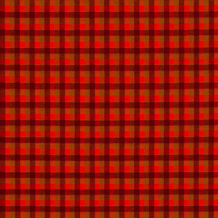 Pattern Photograph - Red And Black Checkered Tablecloth Cloth Background by  Keith Webber Jr