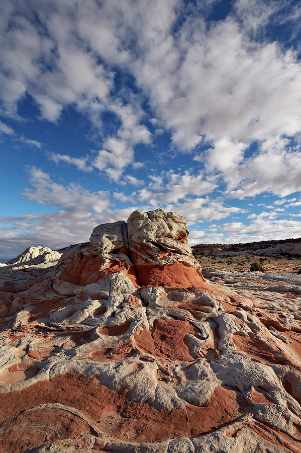 Extreme Terrain Photograph - Red And White Sandstone Formations by James Hager / Robertharding