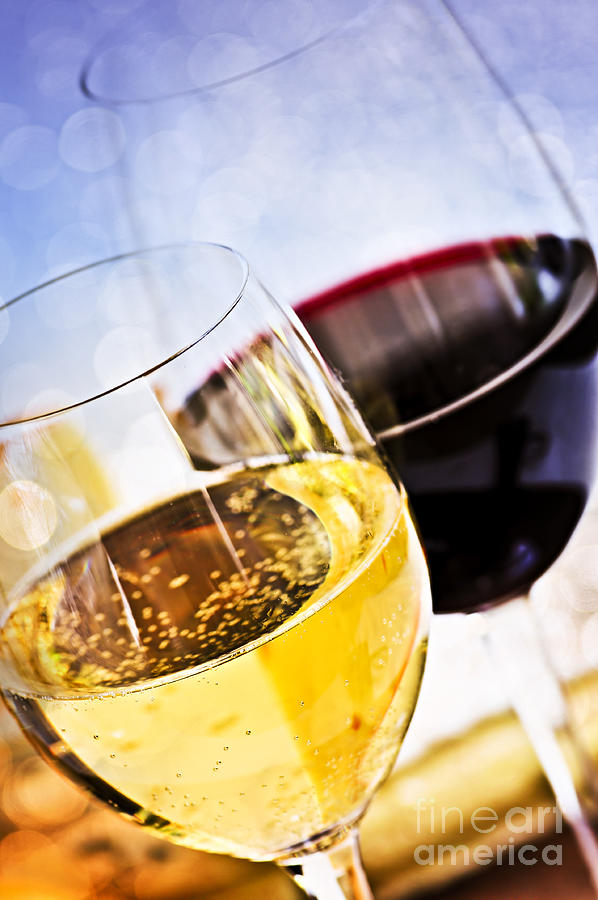 Wine Photograph - Red And White Wine by Elena Elisseeva