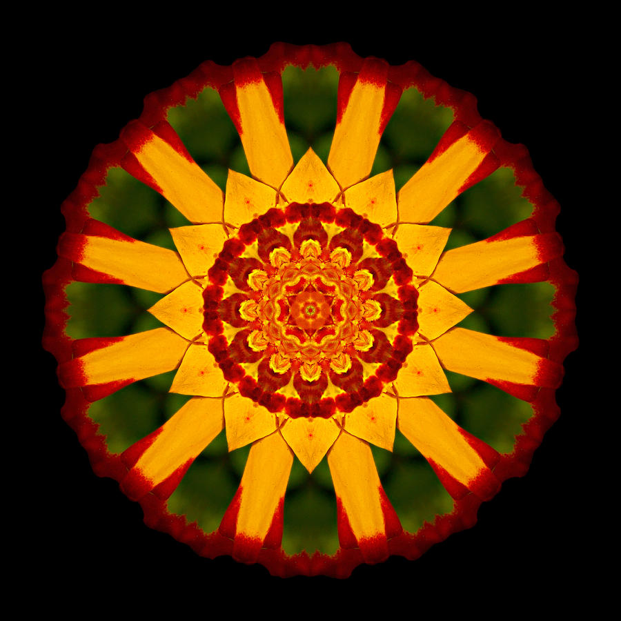 Flower Photograph - Red And Yellow Marigold V Flower Mandala by David J Bookbinder