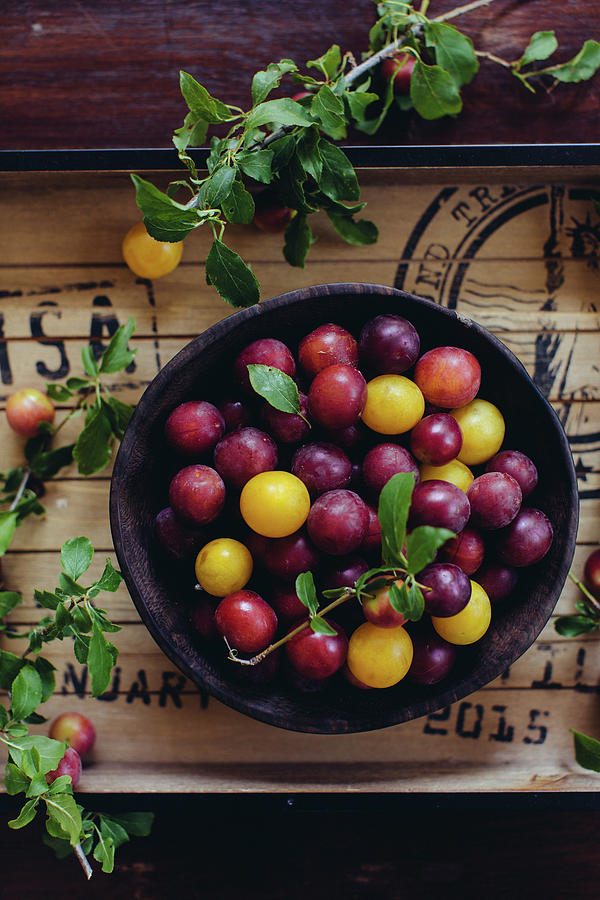 Red And Yellow Plums Photograph by Ingwervanille