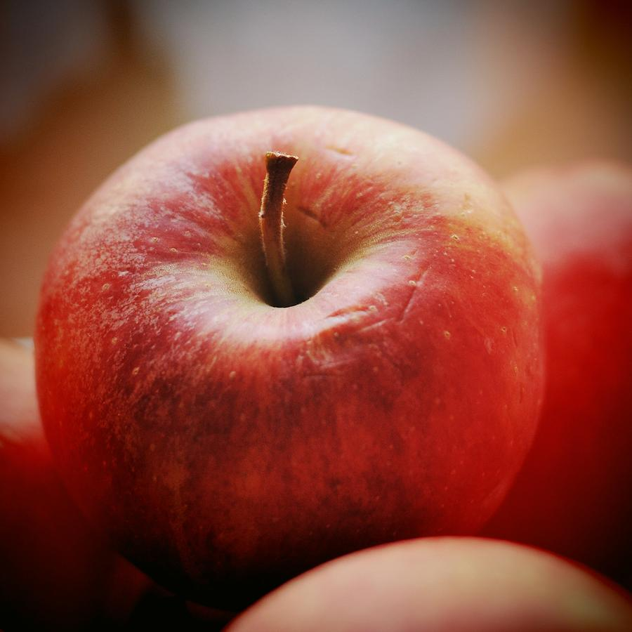 Apple Photograph - Red Apple by Matthias Hauser