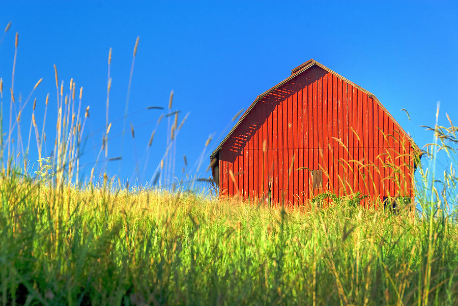 Red Barn Against Blue Sky Photograph by Larry Gerbrandt