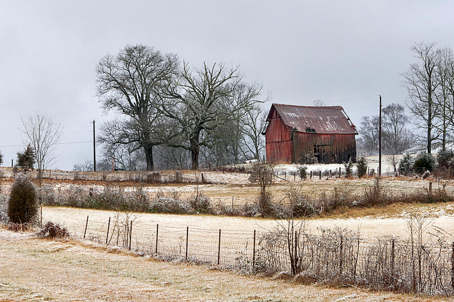 Red Barn by Carol Erikson