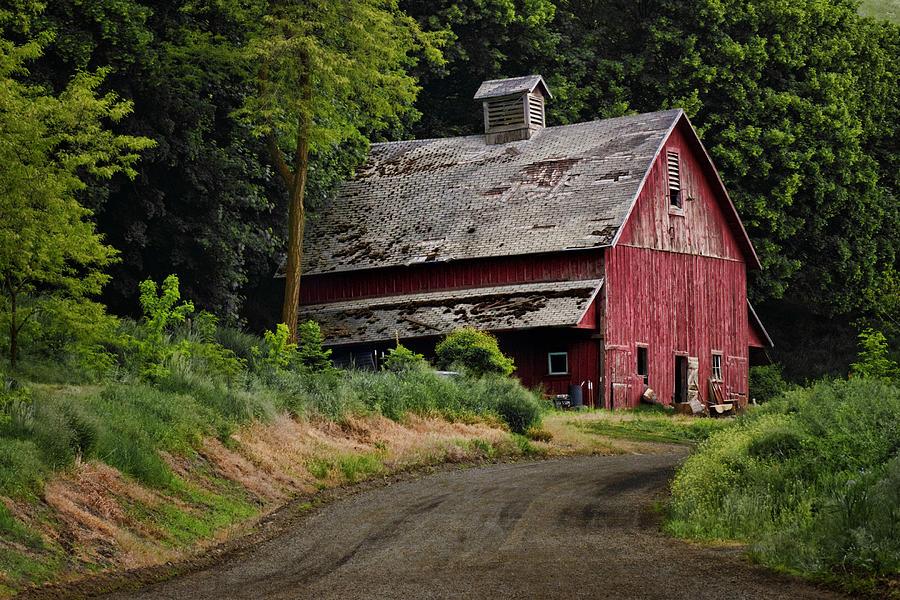 Red Barn Photograph - Red Barn - County Road  by Nikolyn McDonald