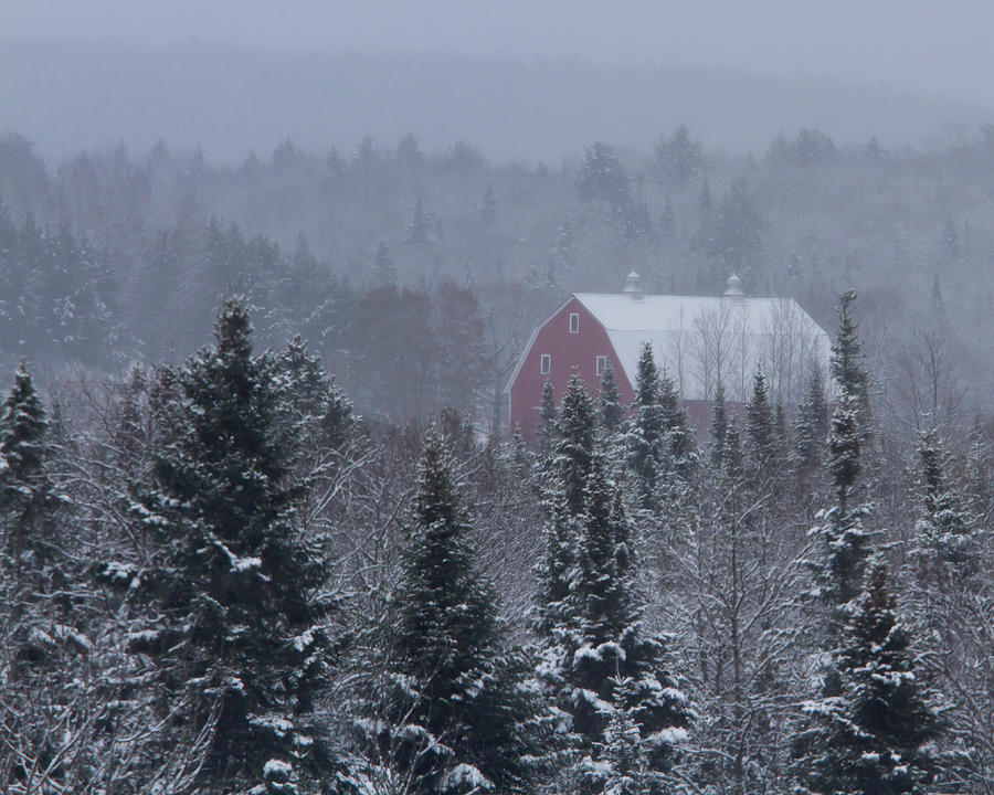 Barn Photograph - Red Barn In Maine by Jack Zievis