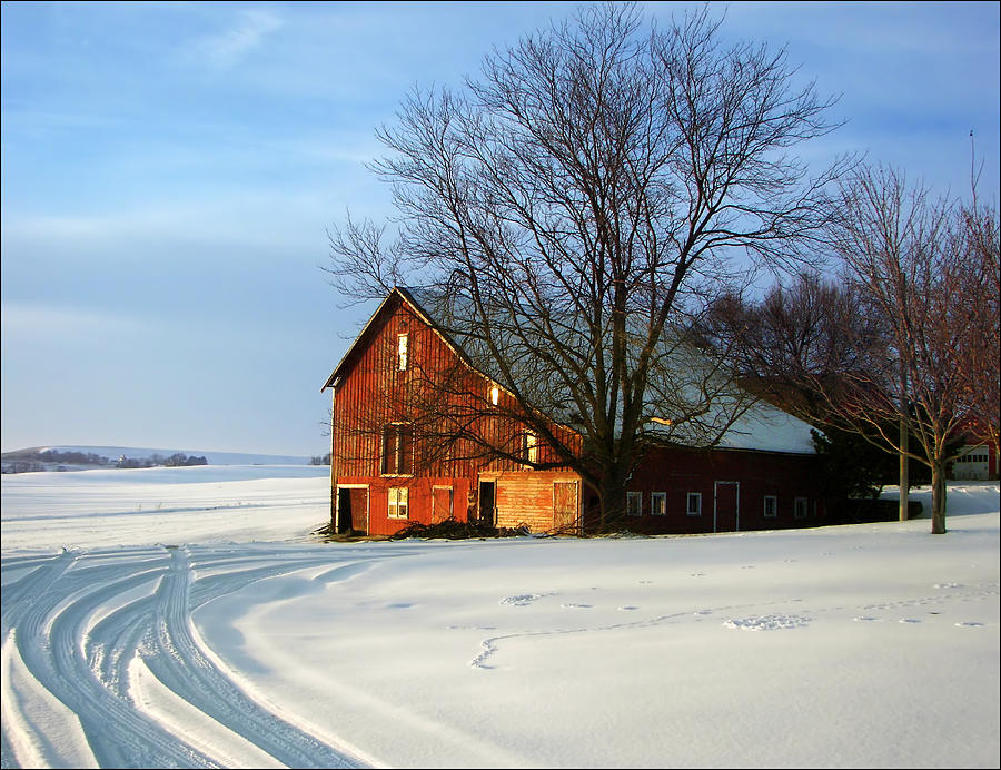 Barns Photograph - Red Barn In Winter by Nikolyn McDonald
