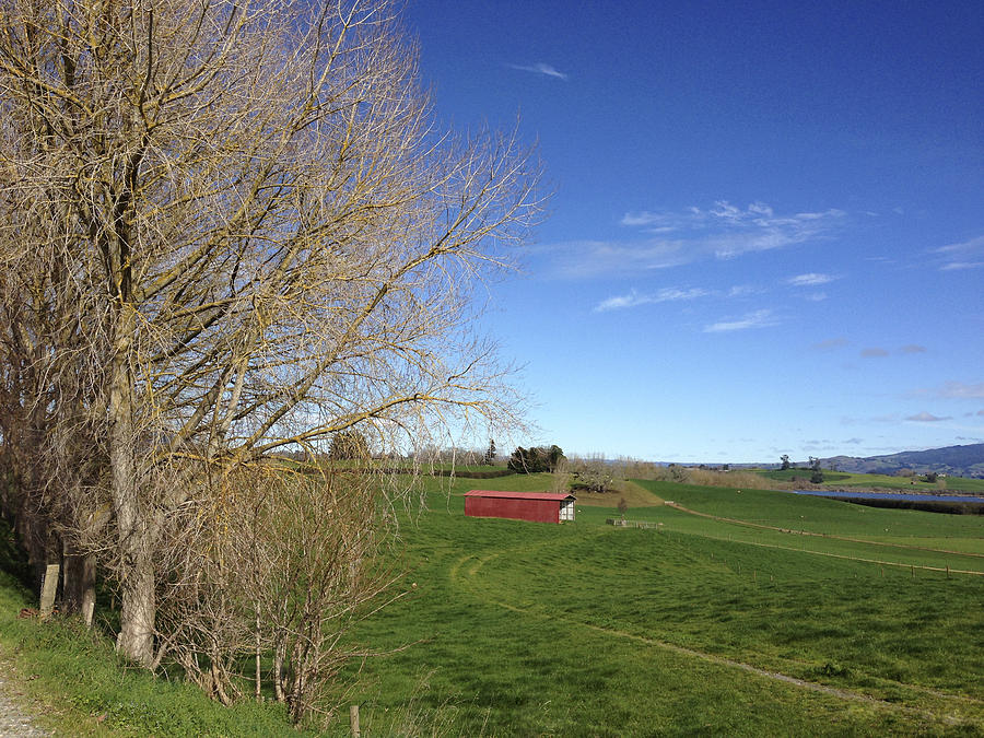 Blue Sky Photograph - Red Barn by Les Cunliffe
