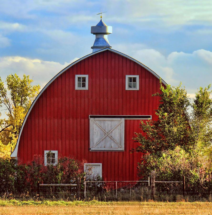 Barn Photograph - Red Barn by Sylvia Thornton