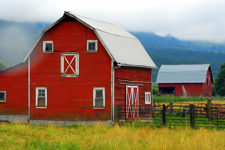 Red Photograph - Red Barns by Mamie Gunning