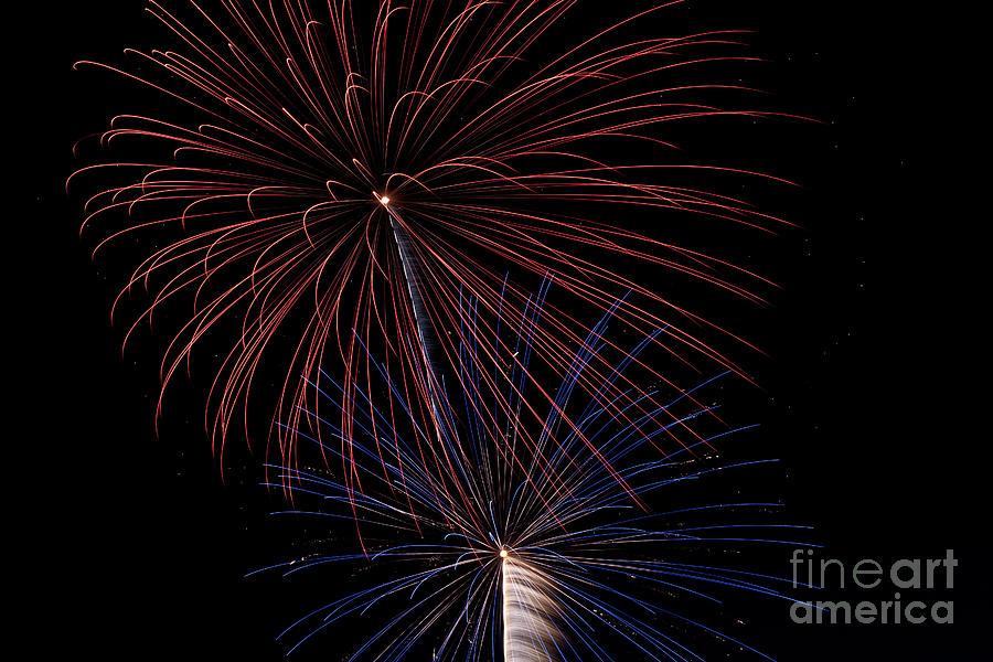 Fireworks Photograph - Red Blue Fireworks by Jason Meyer