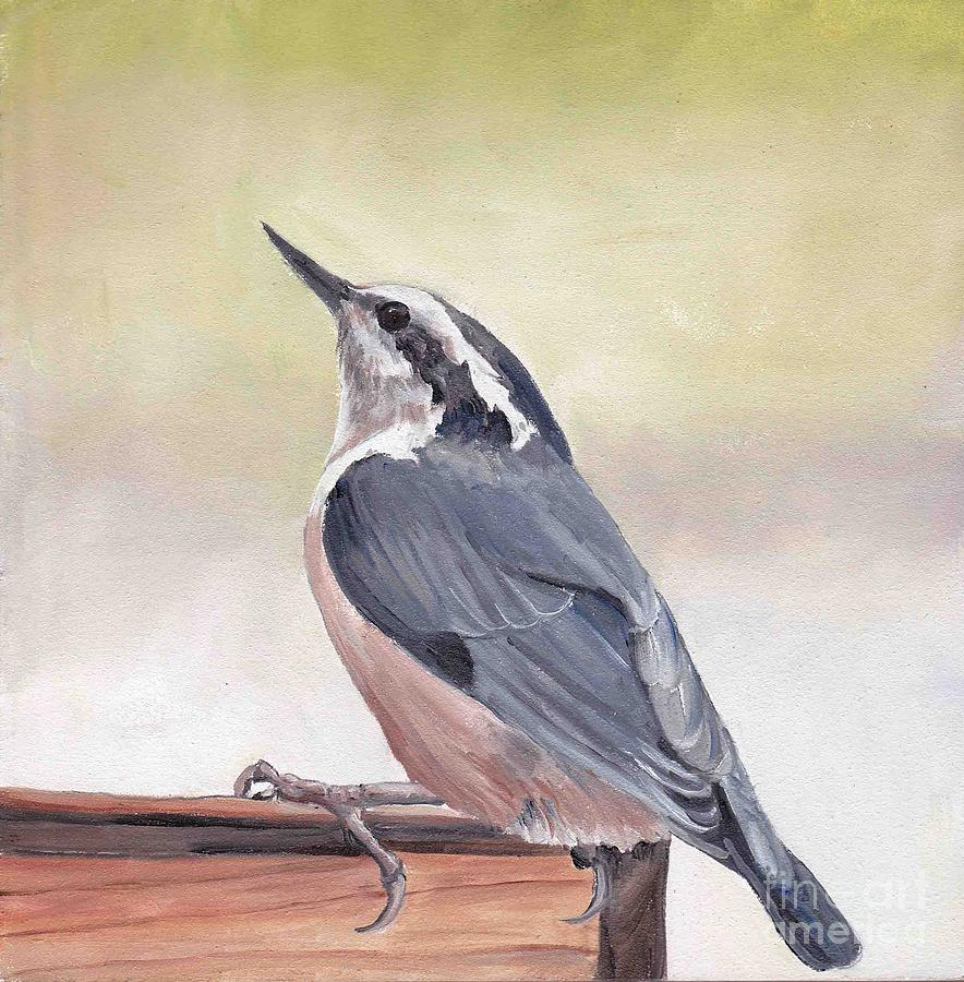 Bird Painting - Red Breasted Nuthatch by Charlotte Yealey